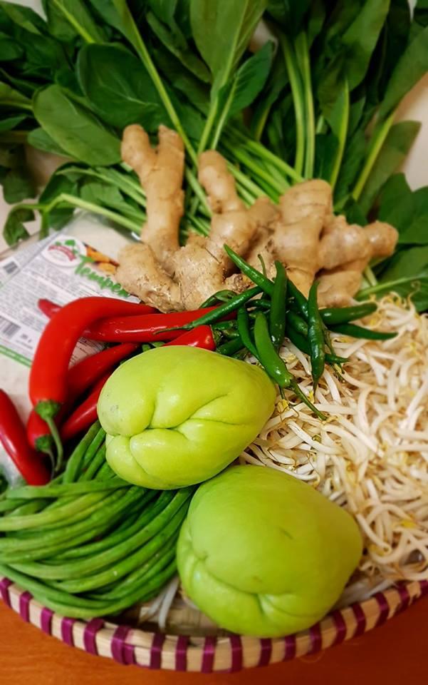 Verse indonesische groente tahu tempe
